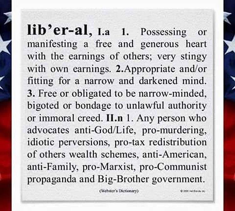 Liberals Defined 750
